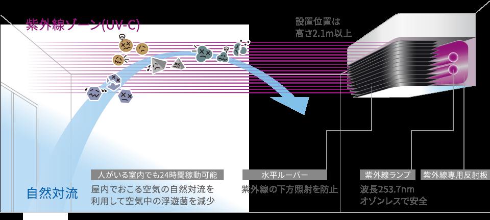 紫外線エリア